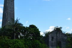The ruins of the Stone Sugar Factory and Sugar Chimney of Antoinette which were built during the 1870s